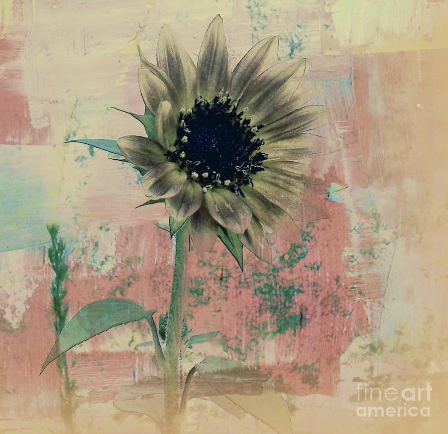 Nature Painting - Faded Love by Janice Westerberg