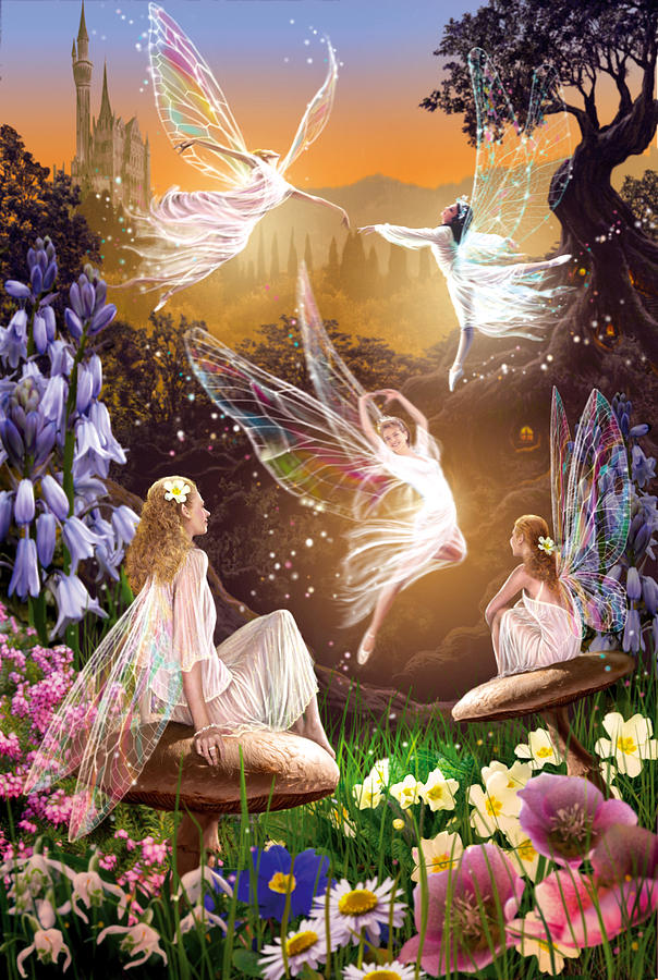 Fairy Ballet Photograph by MGL Meiklejohn Graphics Licensing