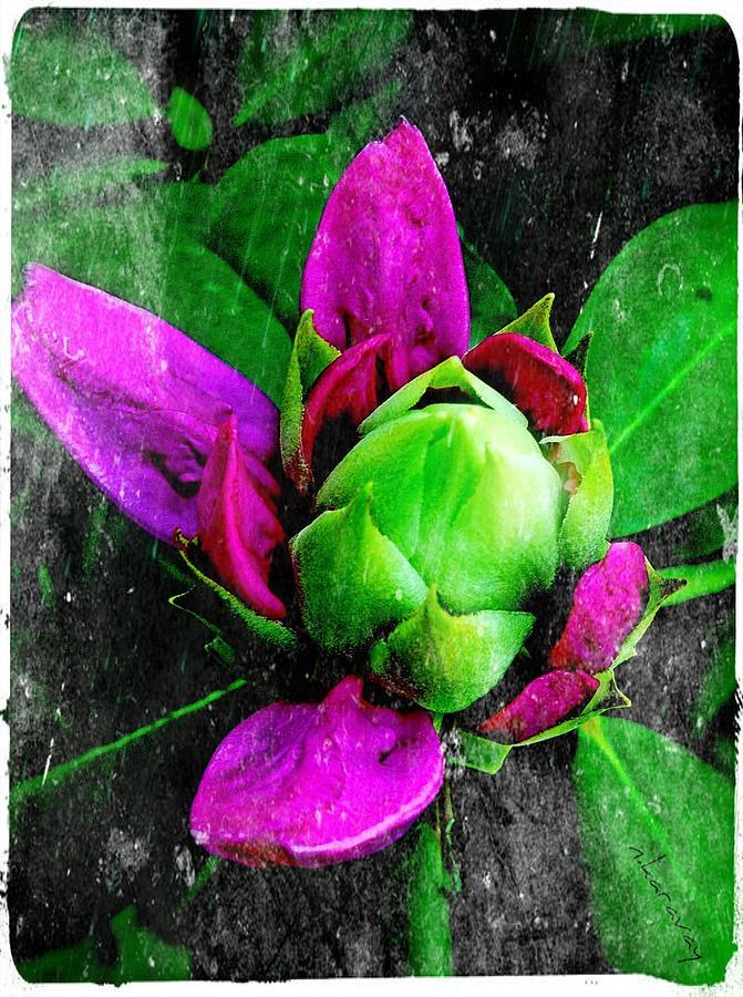 Bloom Digital Art - Fairy Bloom  by Natalya Karavay