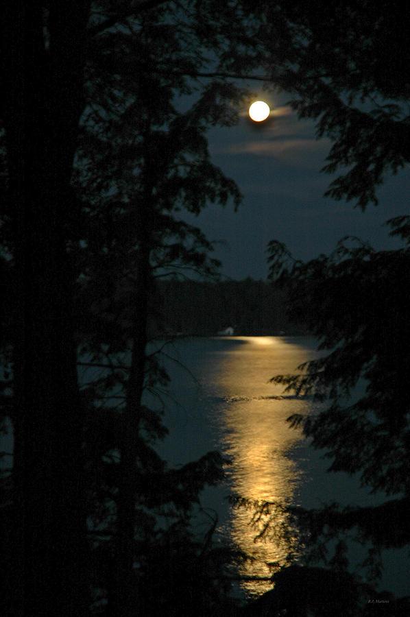 Full Moon Photograph - Fairytale Moon by RJ Martens
