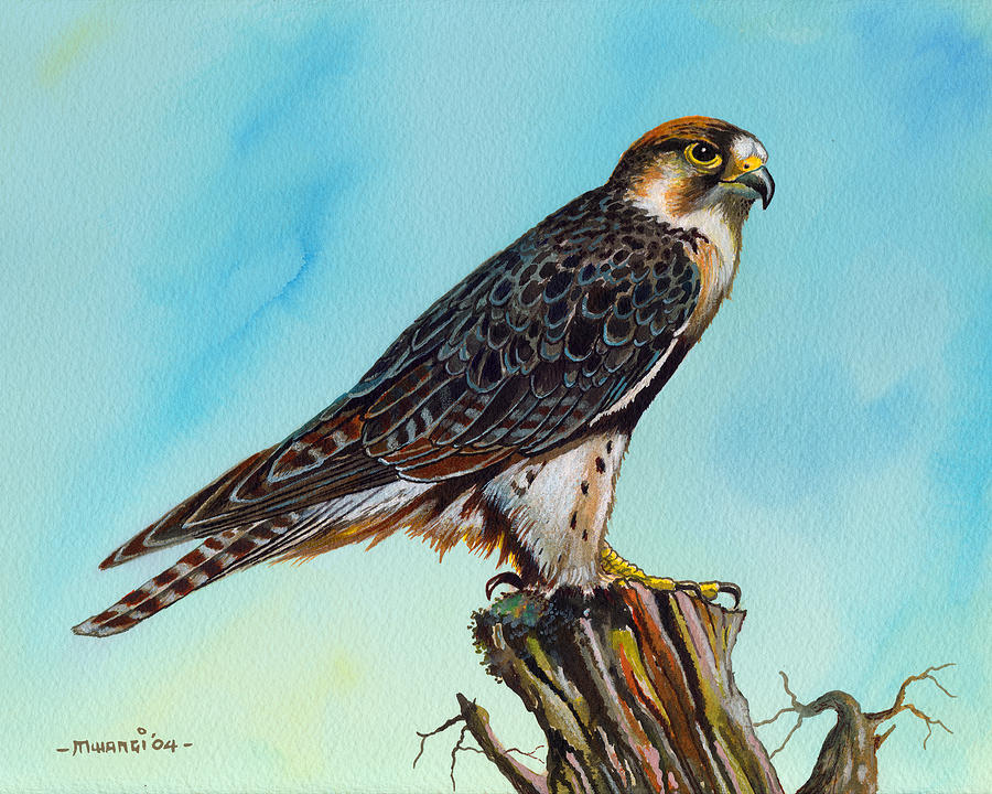 Falcon On Stump Painting