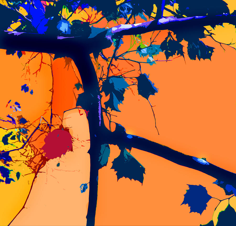 Abstract Digital Art - Fall Abstraction 5-2013 by John Lautermilch