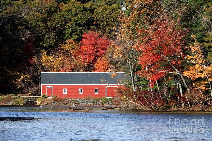 Foliage Photograph - Fall At The Mill by Jayne Carney