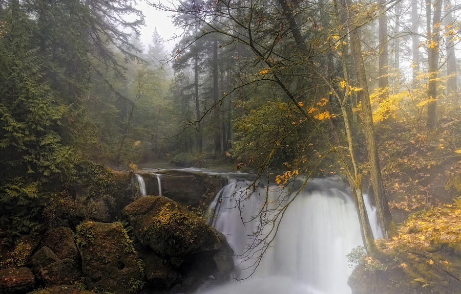 Waterfall Photograph - Fall At Whatcom Falls by Ray Still