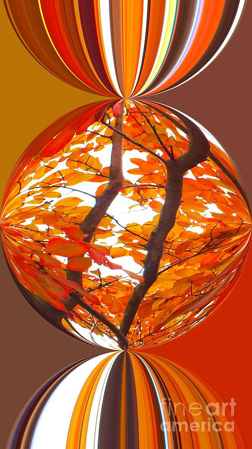 Autumn Leaves Photograph - Fall Ball - Autumn Color by Scott Cameron