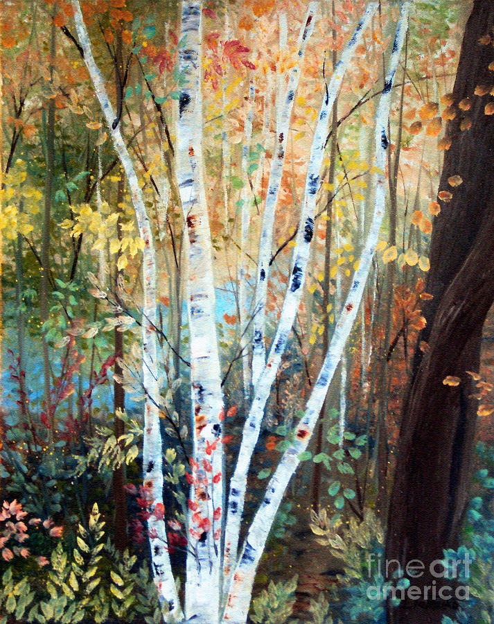 Maine Painting - Fall Birch Trees by Laura Tasheiko