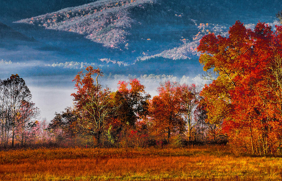 Fall Photograph - Fall Color Feast by Dave Bosse