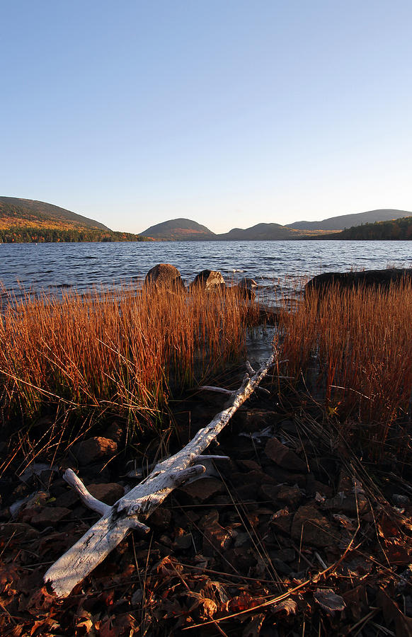 Eagle Photograph - Fall Colors At Eagle Lake In Maine by Juergen Roth