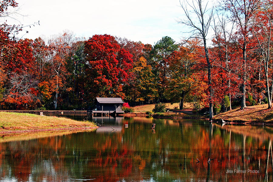 Landscapes Photograph - Fall Colors by Jinx Farmer