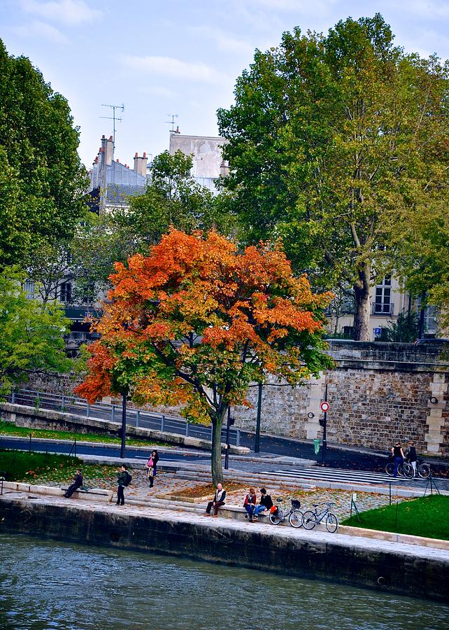 France Photograph - Fall Colors On The Seine by Matt MacMillan