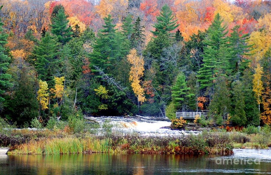 Fall Colors Photograph - Fall Colors On The  Tahquamenon River   by Optical Playground By MP Ray