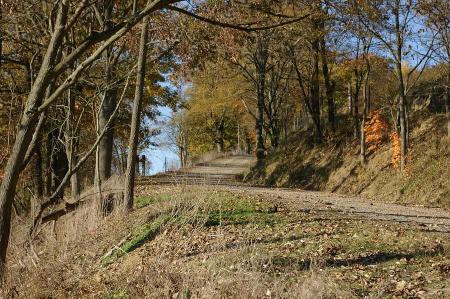 Fall Photograph - Fall Farmroad by Elizabeth King