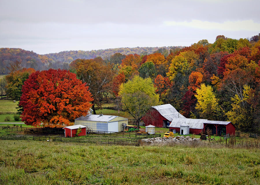 Fall Farmstead Photograph By Cricket Hackmann