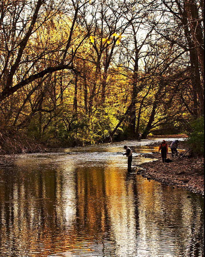 Spring Photograph - Fall Fishing by Tom Gari Gallery-Three-Photography