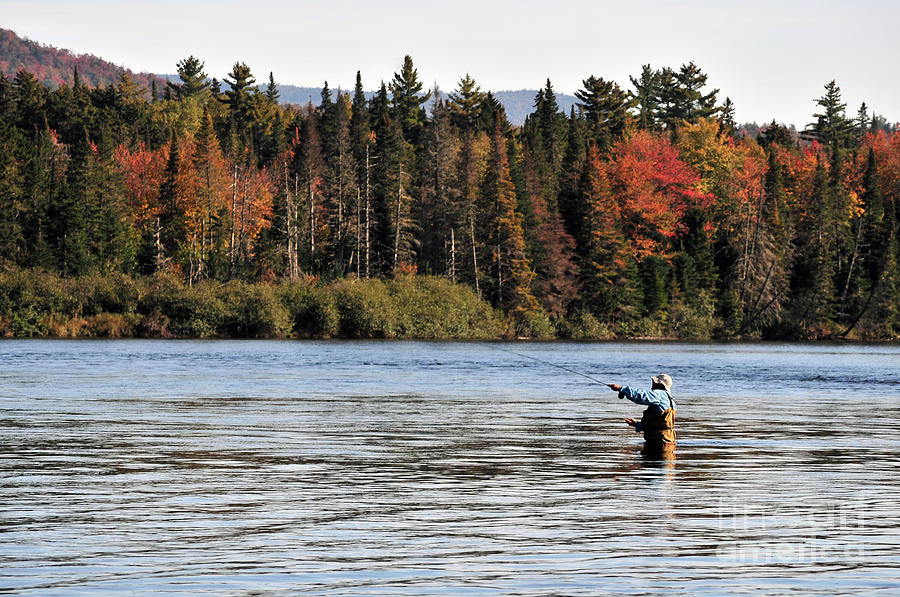 Fall Fly Fishing On The Androscoggin River New Hampshire