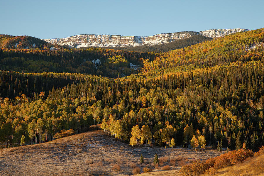 Fall Foliage And Snow-dusted Peaks Photograph by Karen Desjardin