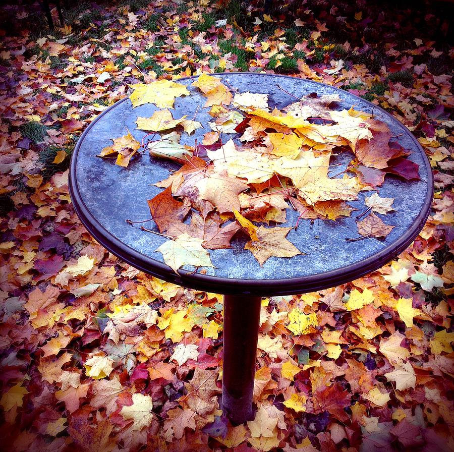 Fall Photograph - Fall foliage on table and ground by Matthias Hauser