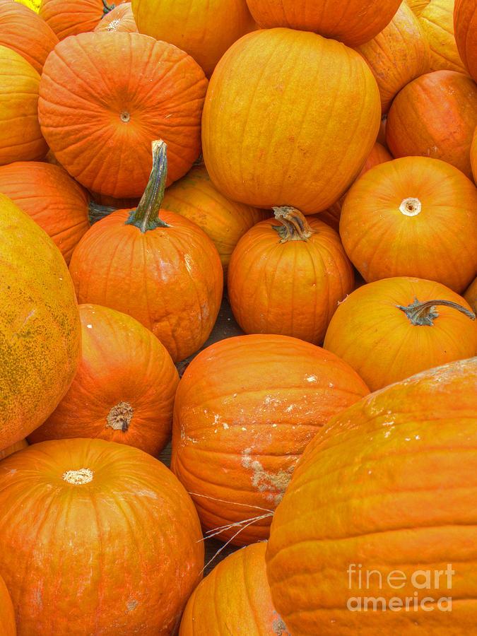 Orange Photograph - Fall Harvest by ELDavis Photography