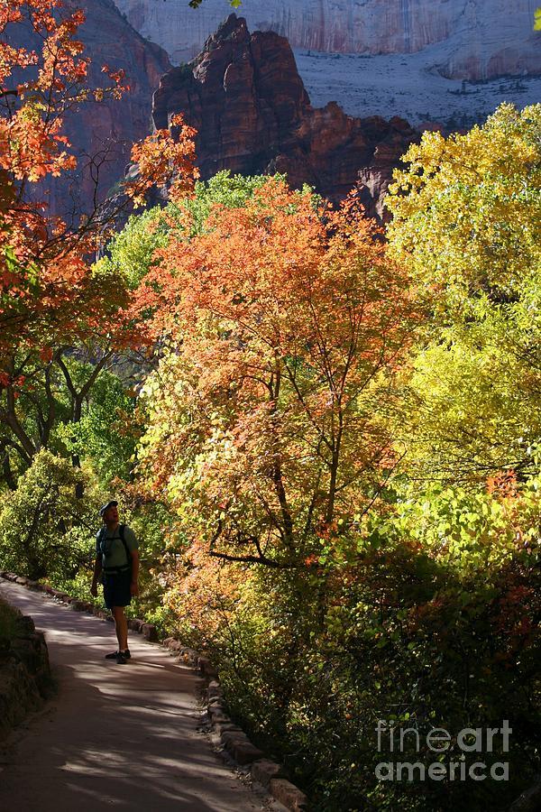 Fall Hiking At Zion National Park Photograph