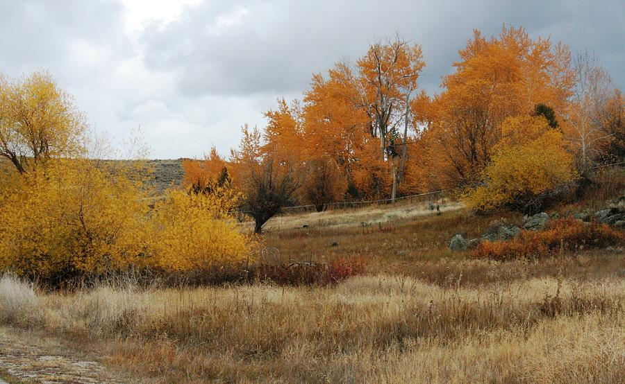 In Montana Photograph - Fall In Montana by Larry Stolle