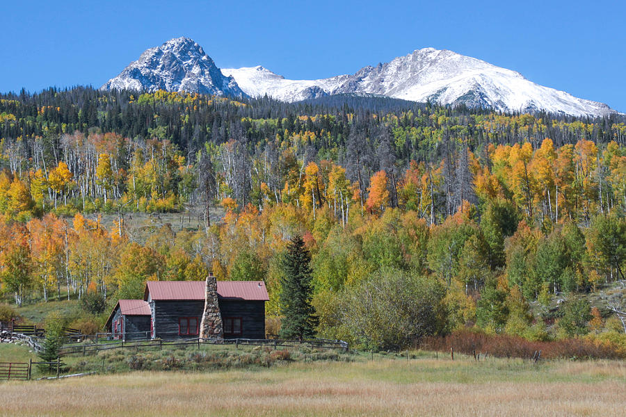 Aspen Trees Photograph - Fall In Summit County by Andrew Serff