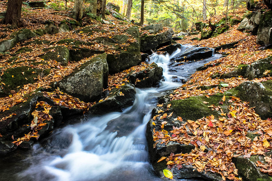 Adirondacks Photograph - Fall In The Adirondacks by Jessica Tabora