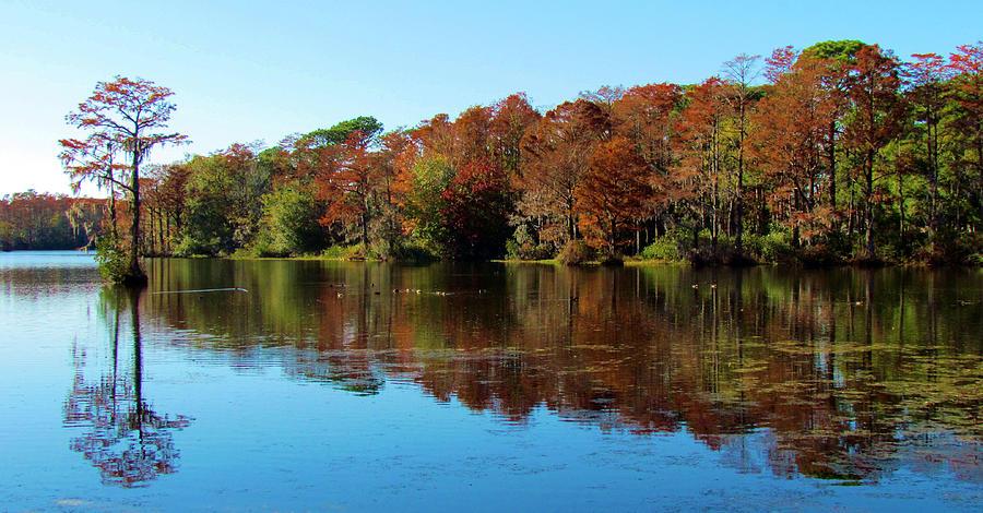 Reflection Photograph - Fall In The Air by Cynthia Guinn