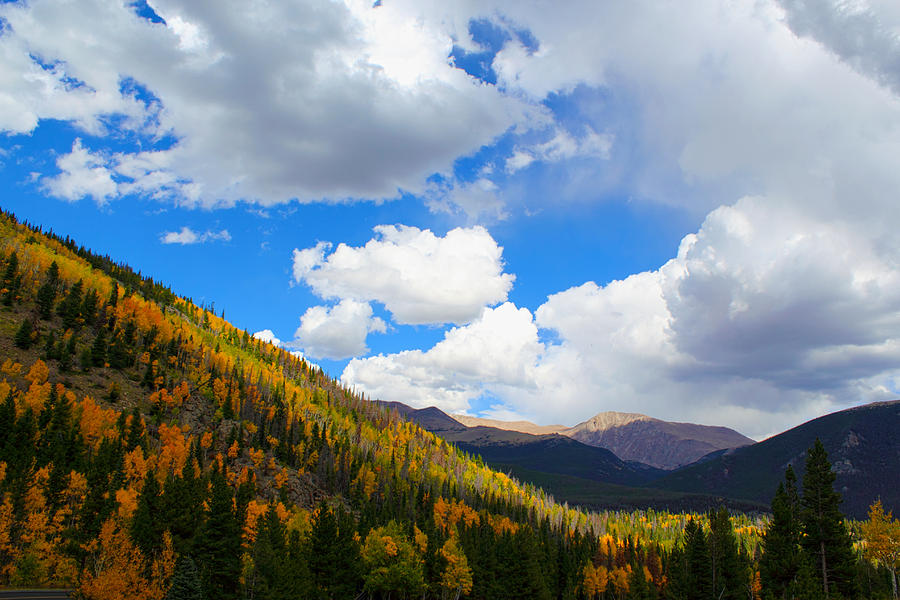 Fall In The Rockies Photograph by Shane Bechler