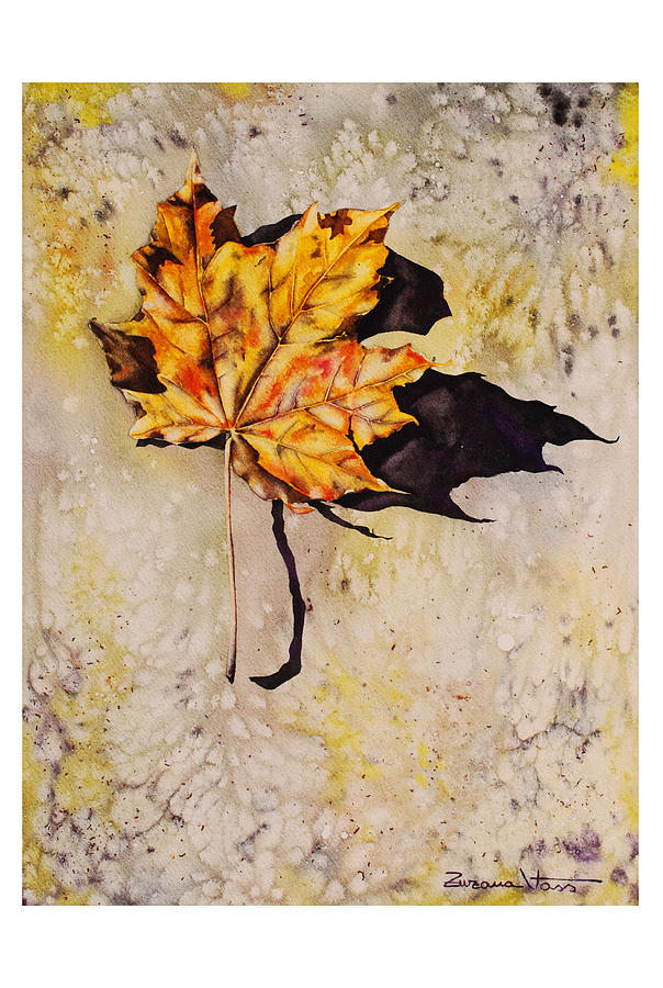 Watercolor Leaf Painting - Fall Leaf by Zuzana Vass
