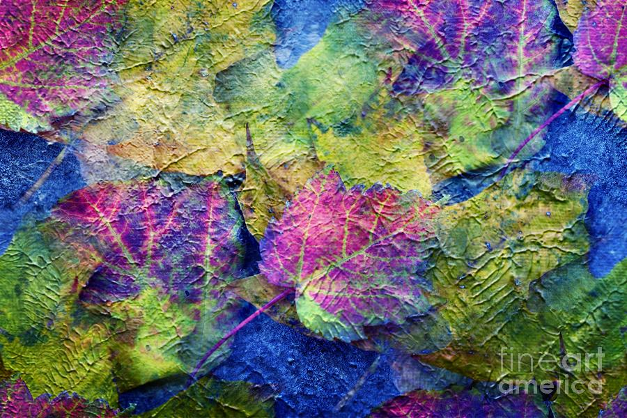Fall Leaves Photograph - Fall Leave Abstract by Judy Palkimas