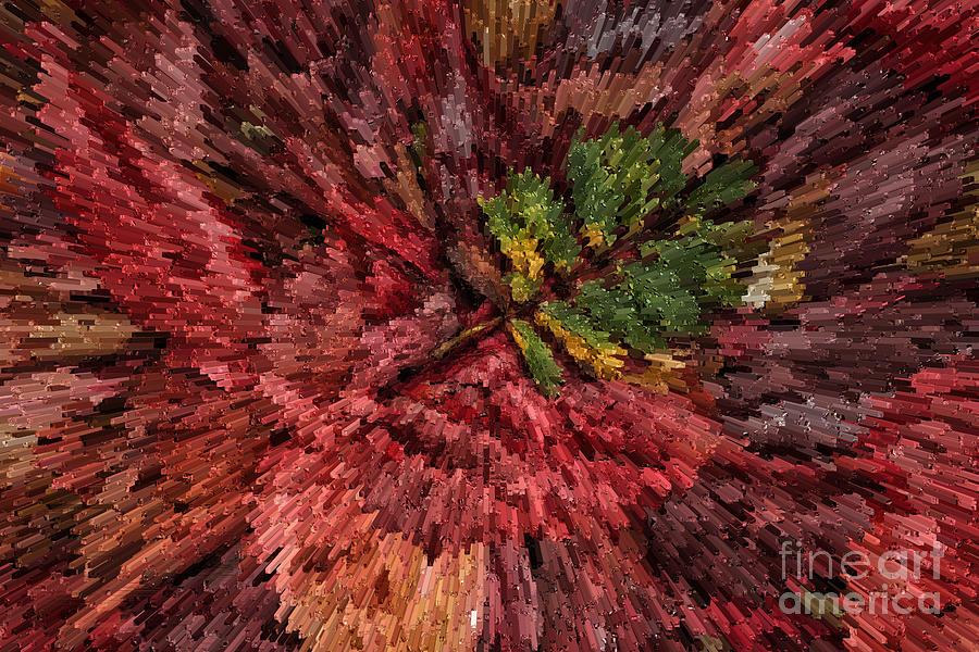 Autumn Photograph - Fall Leaves  by John Farnan