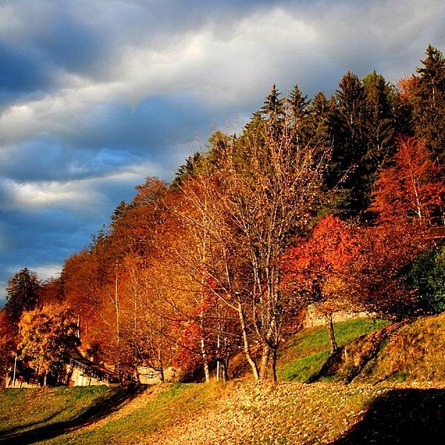 Mountain Photograph - Fall by Luisa Azzolini