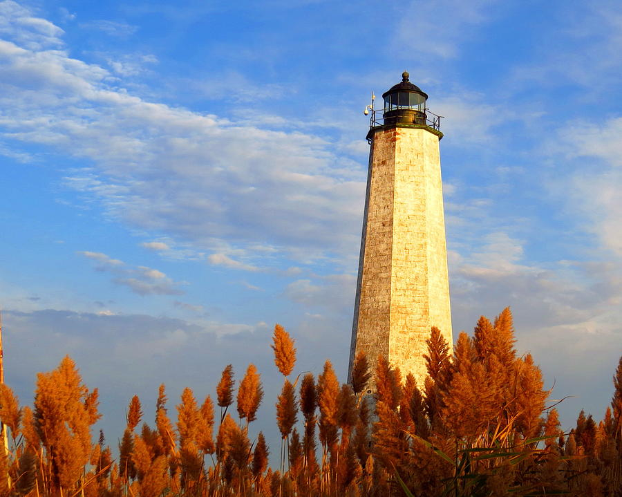 New Haven Photograph - Fall Morning At Lighthouse Point by Stephen Melcher