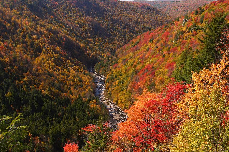 fall mountain scene 11 photograph by john brueske