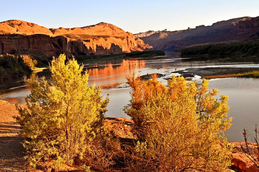 Colorado River Photograph - Fall On The Colorado by Marty Koch