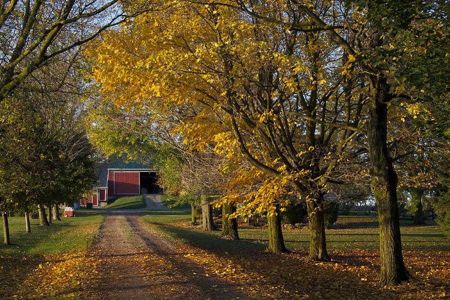 Home Photograph - Fall On The Farm by John-Paul Fillion