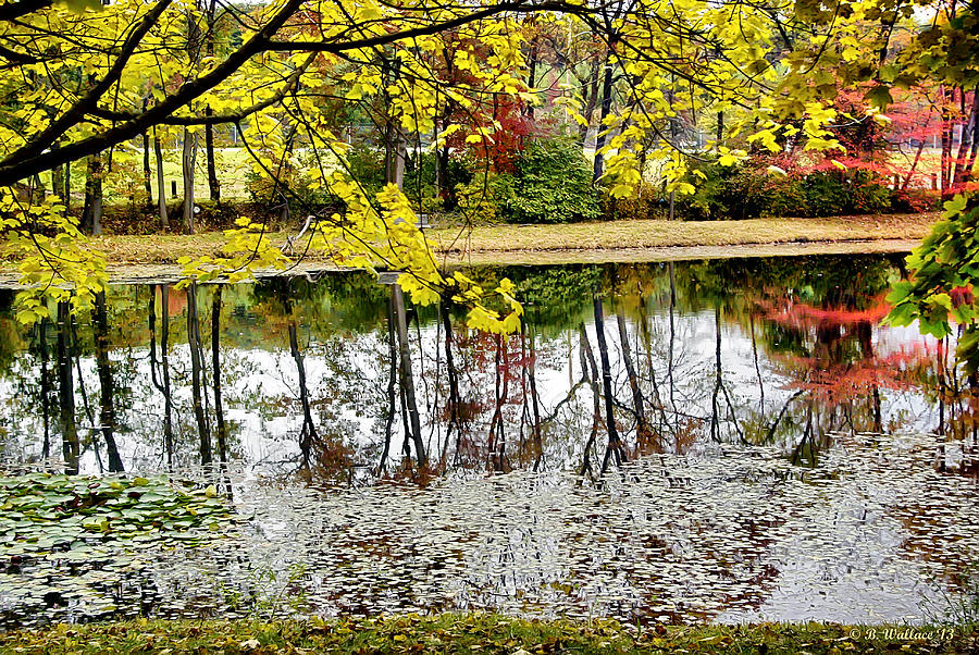 2d Photograph - Fall Reflections by Brian Wallace