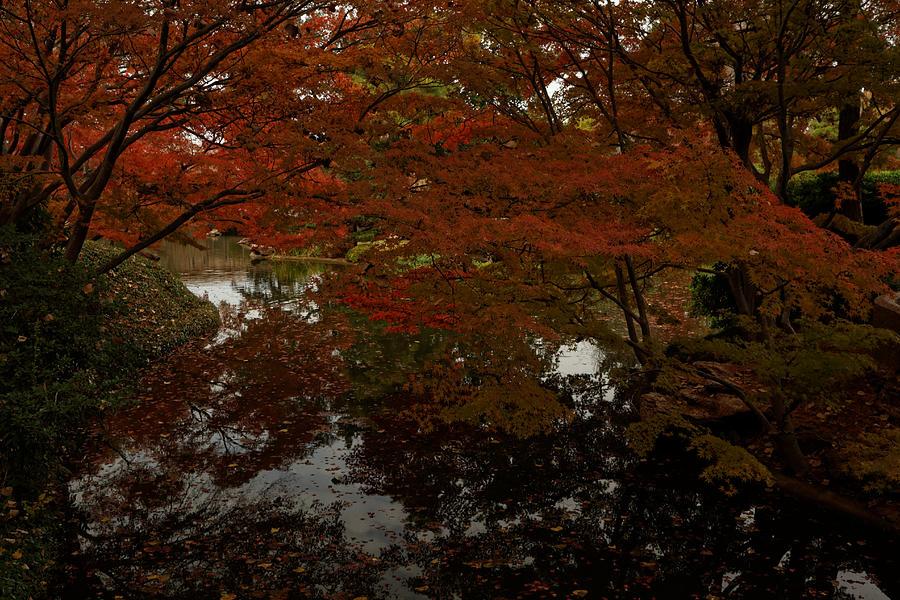 Autumn Photograph - Fall reflections by Jonathan Davison