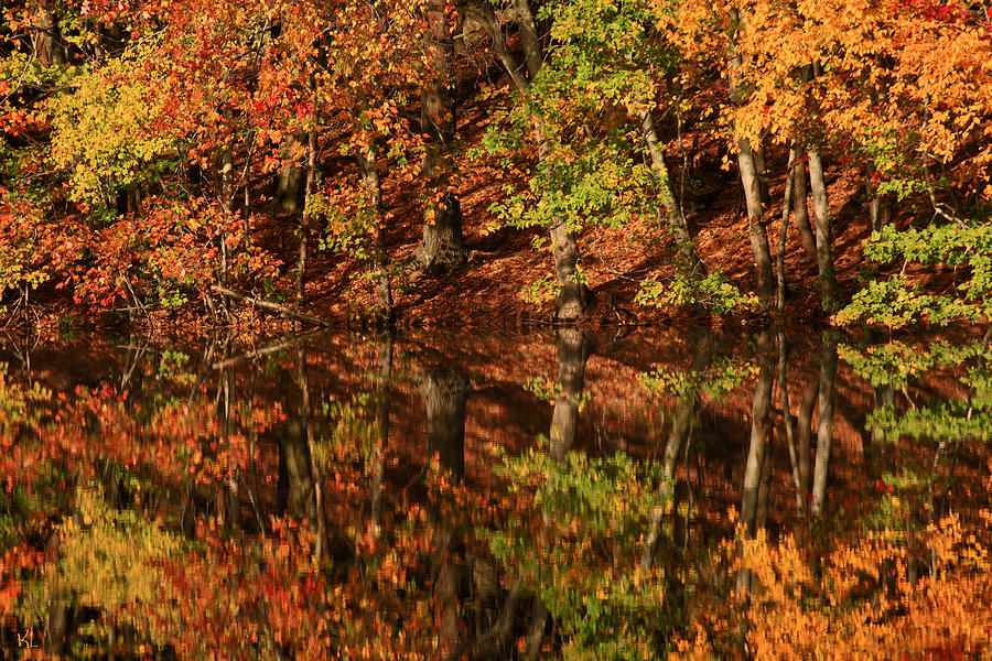 Autumn Photograph - Fall Reflections by Karol Livote