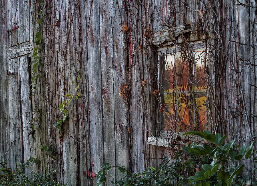 Old Barn Photograph - Fall Reflections On Weathered Glass by John Vose