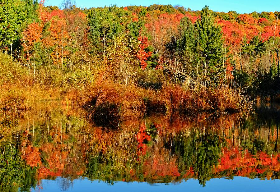 Fall Reflections Photograph by Thomas Nighswander