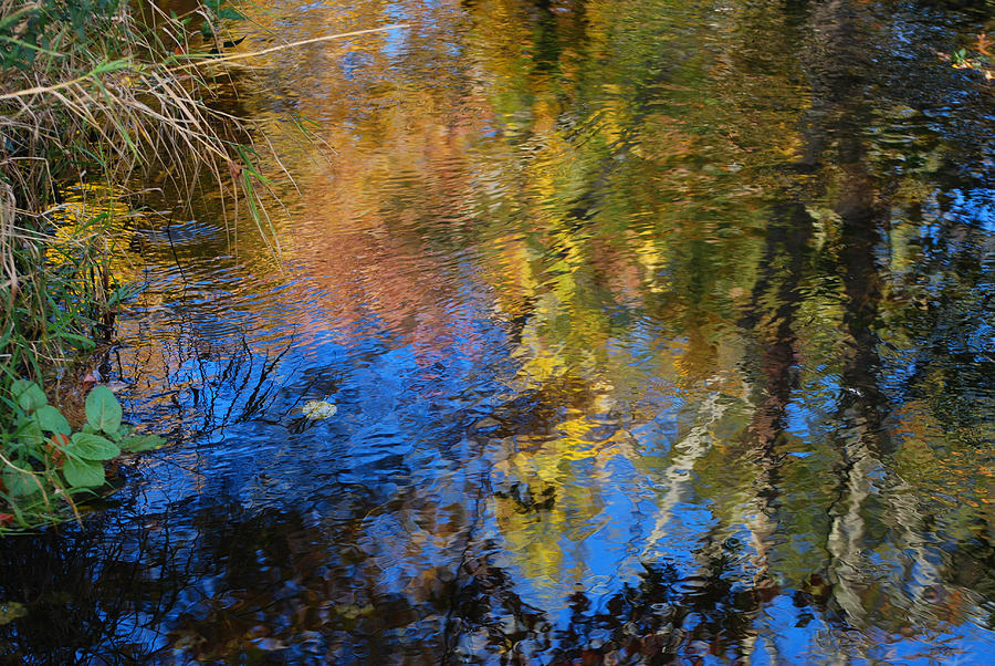 Fall Photograph - Fall Reflexion by Lorena Mahoney