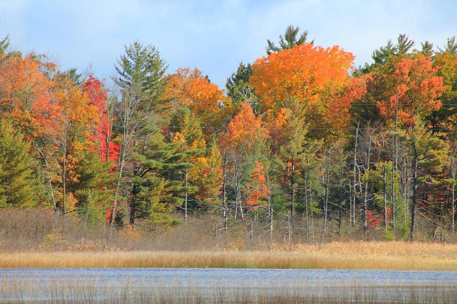 Fall Photograph - Fall Splender by Rhonda Humphreys