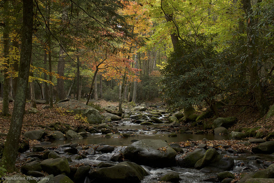 Stream Photograph - Fall Stream Cades Cove Gsmnp by Paul Herrmann
