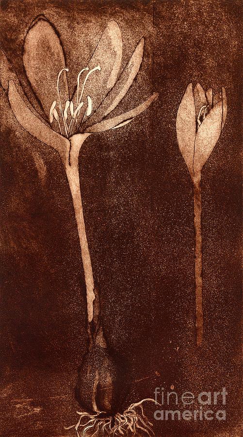 Crocus Painting - Fall Time - autumn crocus meadow safran by Helga Pohlen \ Urft Valley Art