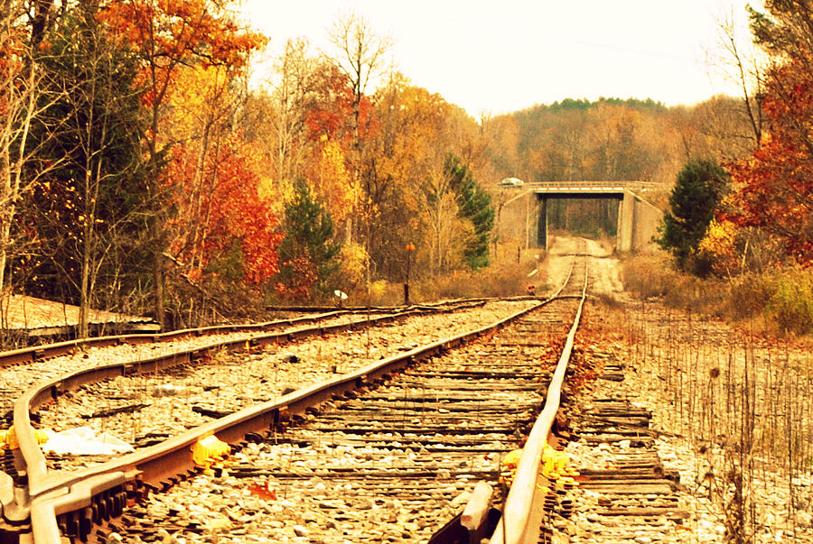 Train Tracks Photograph - Fall Tracks by Stephanie Grooms