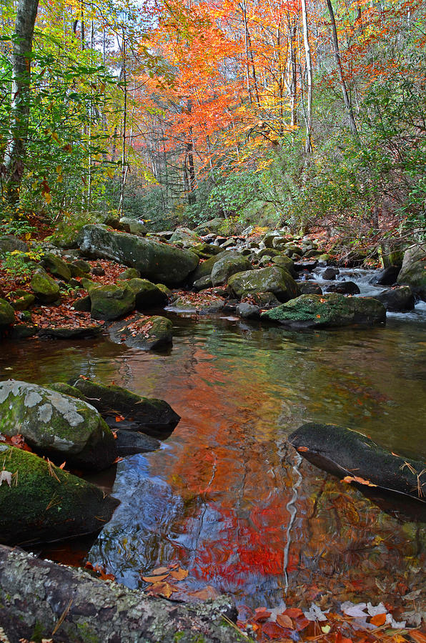 Jones Gap State Park Photograph - Fall Tranquility on the Middle Saluda River by Mary Anne Baker