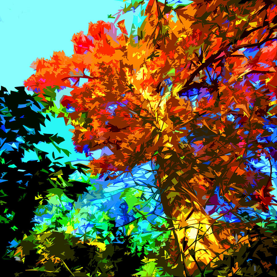 Tree Photograph - Fall Tree Tops by John Lautermilch