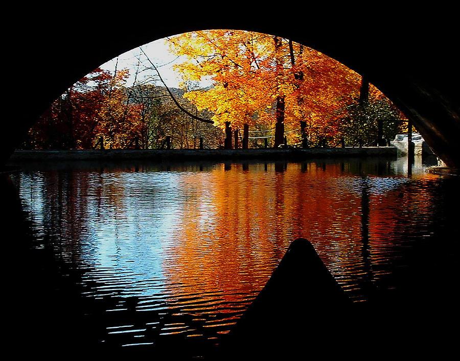 Fall Photograph - Fall Under The Bridge by Tanya Hamell