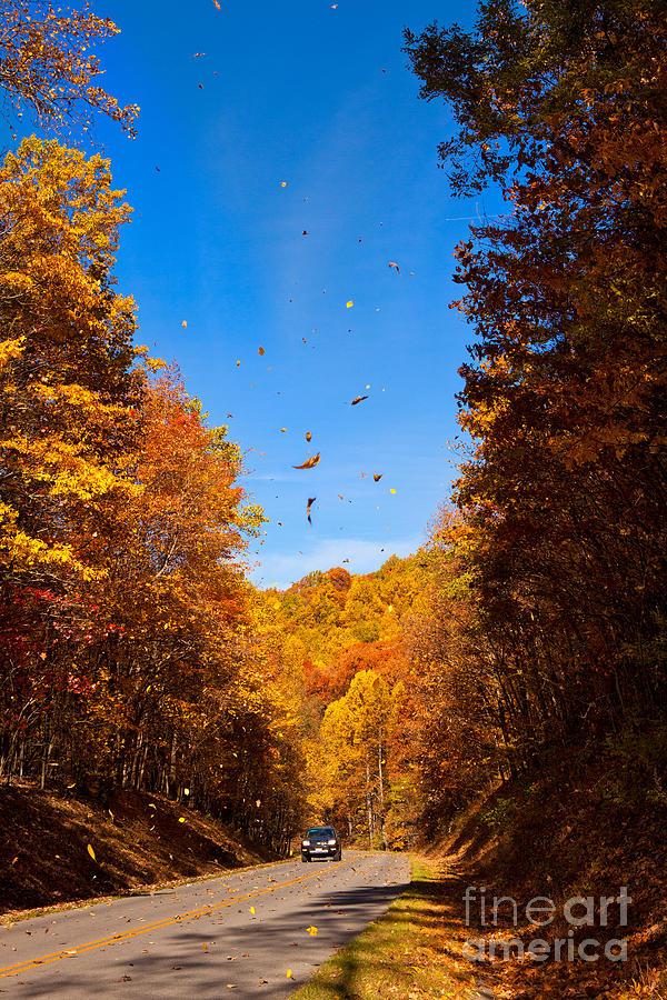 Blue Ridge Parkway Photograph - Falling Fall Leaves - Blue Ridge Parkway by Dan Carmichael